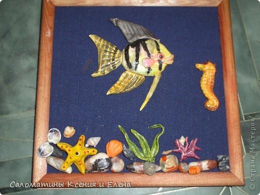 Подводный мир! фото 1