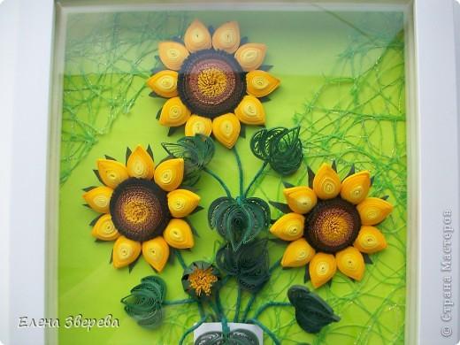 Для тех кому интересно: фон-бумага для принтера+сеточка для оформления цветов. фото 2