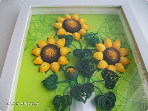 Для тех кому интересно: фон-бумага для принтера+сеточка для оформления цветов. фото 3