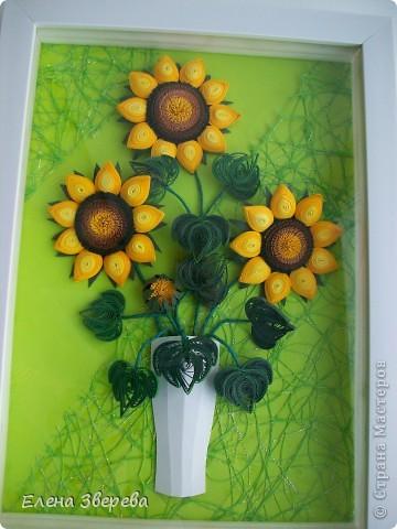 Для тех кому интересно: фон-бумага для принтера+сеточка для оформления цветов. фото 1