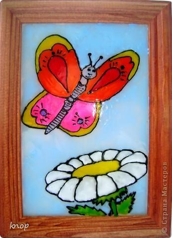 бабочка над ромашкой