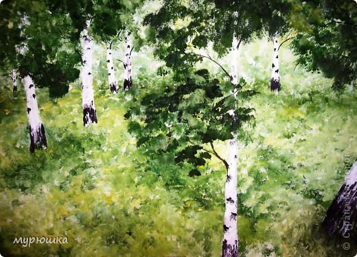 Лесные зарисовки фото 2