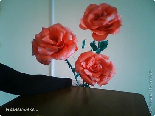 Сделала вот такие розы, правда не такие уж гиганты, на сайте есть и больше...Но на первый раз сойдет, руку надо набивать))) фото 1