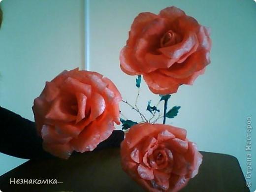 Сделала вот такие розы, правда не такие уж гиганты, на сайте есть и больше...Но на первый раз сойдет, руку надо набивать))) фото 2