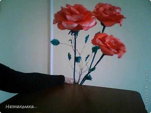Сделала вот такие розы, правда не такие уж гиганты, на сайте есть и больше...Но на первый раз сойдет, руку надо набивать))) фото 3