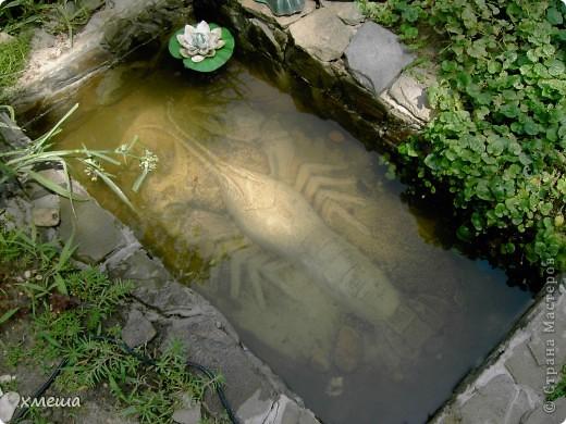 Мой мини водоечик. фото 3
