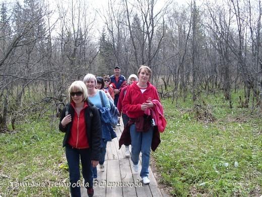 Конец года родители решили отметить на природе. Мы отправились в Национальный парк Зюраткуль. фото 8