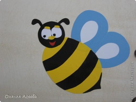 Вот такие пчелы прилетели к нам на банкетки в детский сад. фото 4
