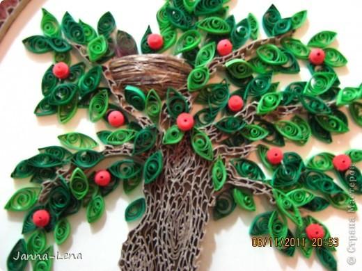 Наше дерево. фото 3