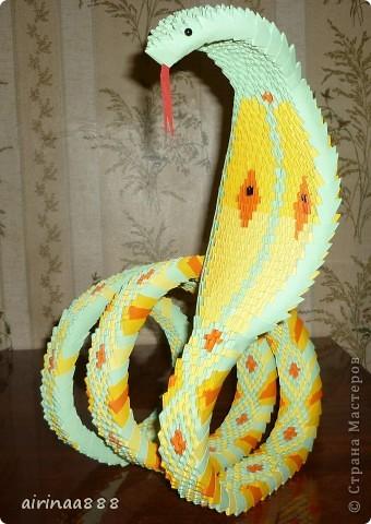 кобра фото 2