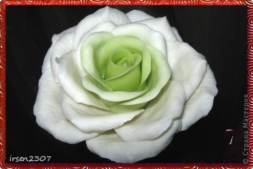 """Топиарий """"Зеленые розы"""" фото 6"""