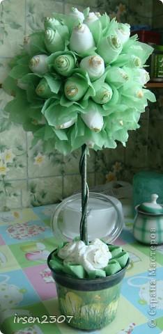 """Топиарий """"Зеленые розы"""" фото 1"""