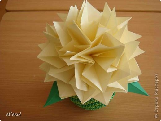 Еще один цветок в мою коллекцию. фото 3