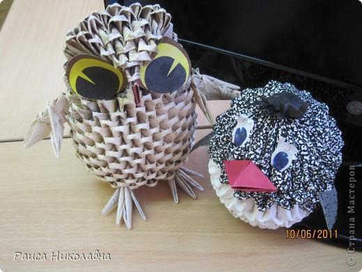 Совушка-сова. фото 4