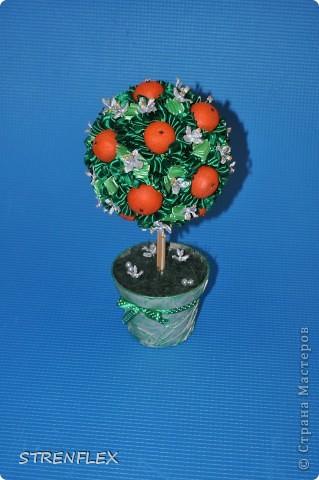 Вот представляю на ваш суд мое первое дерево сделанное на заказ!!! До этого все мои деревья расходились на подарки друзьям и родственникам. А это уже моя подруга заказала мне это дерево для на свадьбу для своей сестры. фото 2