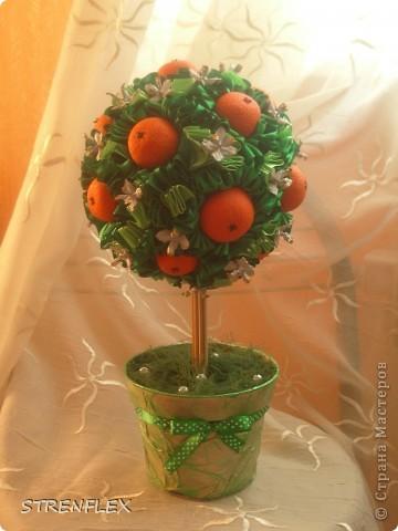 Вот представляю на ваш суд мое первое дерево сделанное на заказ!!! До этого все мои деревья расходились на подарки друзьям и родственникам. А это уже моя подруга заказала мне это дерево для на свадьбу для своей сестры. фото 9