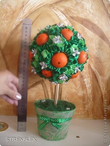 Вот представляю на ваш суд мое первое дерево сделанное на заказ!!! До этого все мои деревья расходились на подарки друзьям и родственникам. А это уже моя подруга заказала мне это дерево для на свадьбу для своей сестры. фото 14