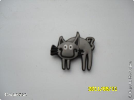 Кошка-Заплатка)))) фото 2