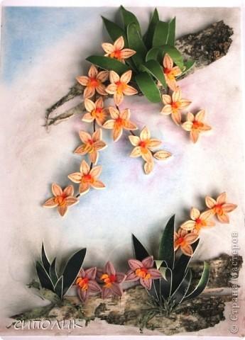 Ночь благополучно закончилась, луна ушла на покой, в тропиках наступило утро.... А орхидеи продолжают цвести и радовать нас своей красотой. Эту работу я сделала в подарок своей любимой крестнице. Помните, в прошлом году для неё я делала клематисы?  Надо сказать,что они весь год честно занимали самое видное место в квартире.Интересно займут ли это место орхидеи? Посмотрим. фото 1