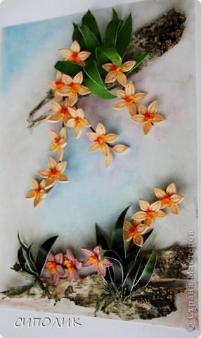 Ночь благополучно закончилась, луна ушла на покой, в тропиках наступило утро.... А орхидеи продолжают цвести и радовать нас своей красотой. Эту работу я сделала в подарок своей любимой крестнице. Помните, в прошлом году для неё я делала клематисы?  Надо сказать,что они весь год честно занимали самое видное место в квартире.Интересно займут ли это место орхидеи? Посмотрим. фото 2