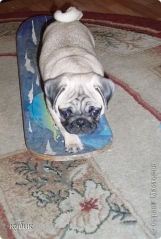 вот так я изменила, украсила  подушку  для Кетти фото 4