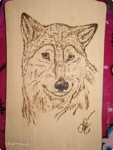 """""""Волк"""". Выжигание (Рисунок мой)  фото 2"""