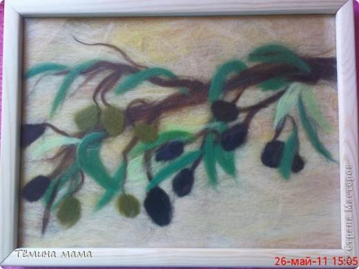 оливки фото 1