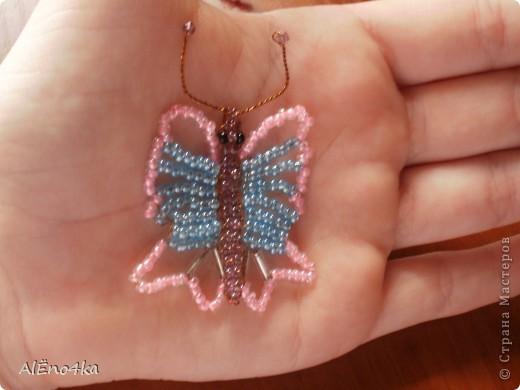 Большая и маленькая бабочки фото 4