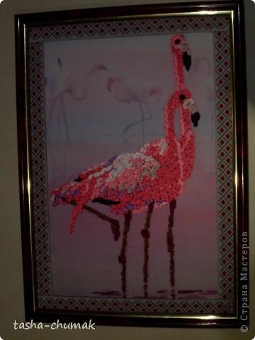 Я так увлеклась принтами.... А еще увлеклась вышивками птиц... фото 7