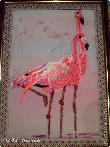 Я так увлеклась принтами.... А еще увлеклась вышивками птиц... фото 1