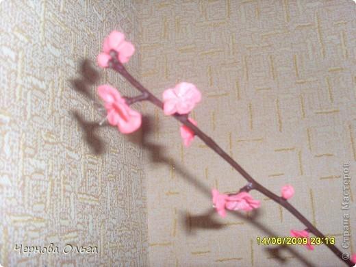 Это моя проба,хочу сделать дерево сакуру (объёмную). Начала эксперимент с дешевого материала( Детское тесто для лепки).   фото 1