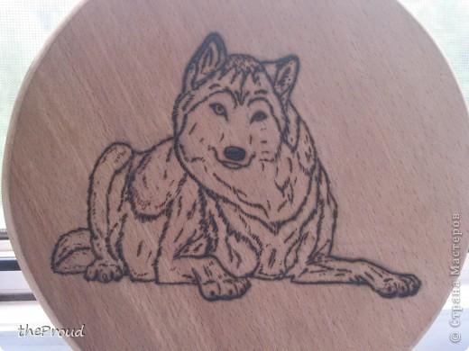"""""""Волк"""". Выжигание (Рисунок мой)  фото 1"""