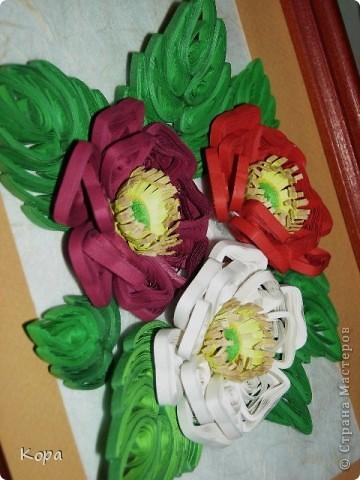 Три розы. фото 3