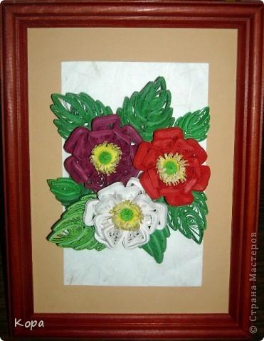 Три розы. фото 2