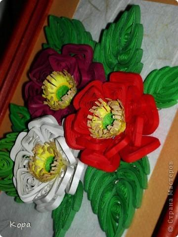 Три розы. фото 1