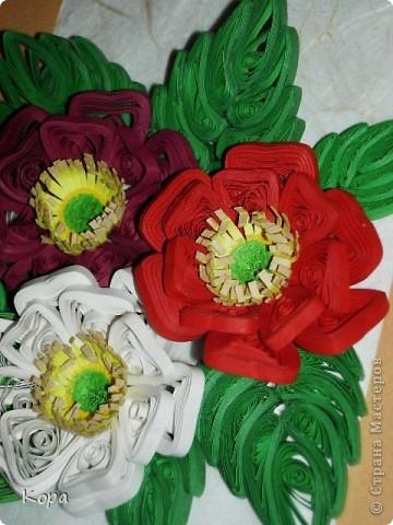 Три розы. фото 4
