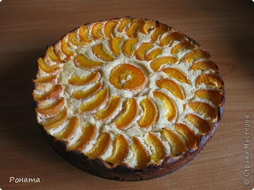"""Сегодня пекла пирог по рецепту, который давала здесь - http://stranamasterov.ru/node/201307 в пункте 5. Но так как пора сейчас не яблочная, сделала с абрикосами. Внутрь абрикосы не клала, а добавила в творожную смесь абрикосовый джем, закатанный прошлым летом (так его никто есть не хочет - ну не любители такого мои мужчины :)). В следующий раз теста сделаю двойную порцию, чтоб на бортики хватило, а то начинка по краям слегка подгорела - передержала в духовке минут 10 :(( Пирог получился вкусным, после ужина уже больше половины """"умяли"""" :)) фото 1"""