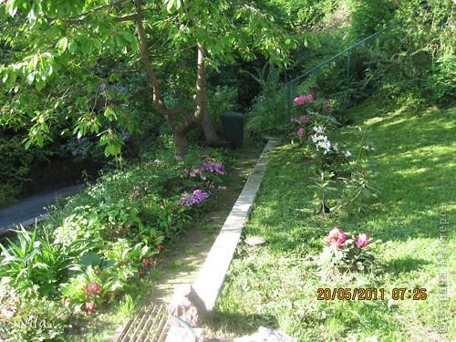 НЕсколько лет назад мы переехали в домик с прекрасным ланшафтом. Там раньше использовалось под огород кусочек территории, остальное все , (склоны), заросло кустами , деревьями и имело вид дикой природы. Тоже, по своему, было красиво, как в парке. Но хотелось цветов и газоны. И маленький огородец, где бы росло все , но с минимуиом усилий. И вот прошло 4 года. Мы с мужем и сыном, почти своими усилиями ,сделали такой мини парк или сад, или  как назвать не знаю, но место где мы все и все наши друзья и родственники любим отдыхать Приглашаю и вас к себе в гости. Этот уголок под окнами. Спереди построили гараж. Видно его крышу. Пока еще не придумали , как украсить ее. Может у кого-то есть идеи... Я постепенно буду грузить фото и описывать растения , может кому интересно, заглядывайте. Буду пополнять. очень тяжело грузится  фото 24