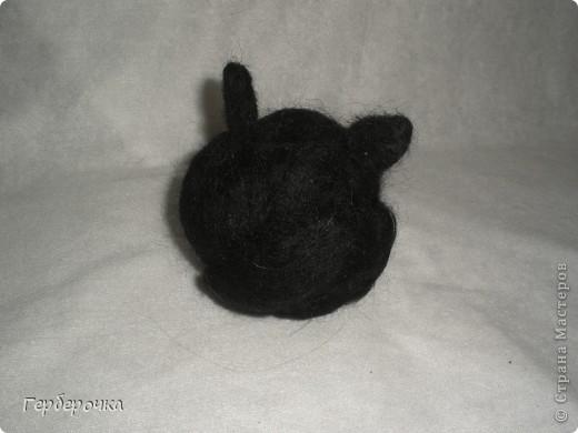 кот Пушок фото 2