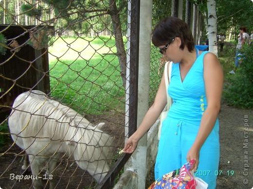 Милые Мастерицы! Приглашаю на экскурсию! ПОЛК (Природно-оздоровительный лесной комплекс) Бурабай открыл двери нового Музея природы.  фото 16