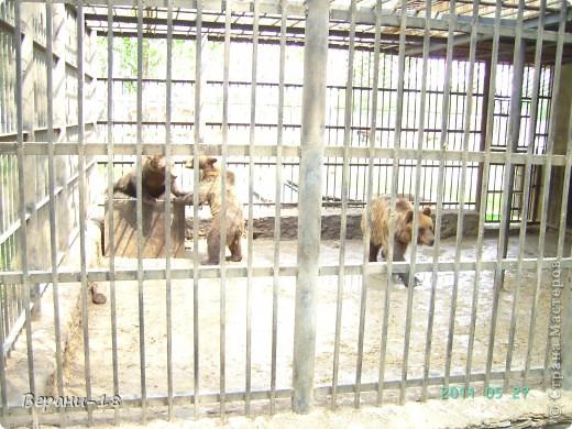 Милые Мастерицы! Приглашаю на экскурсию! ПОЛК (Природно-оздоровительный лесной комплекс) Бурабай открыл двери нового Музея природы.  фото 9