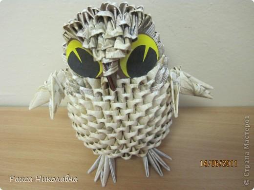 Совушка-сова. фото 1