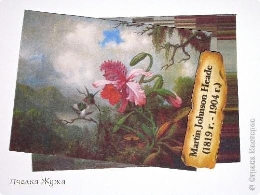 В 1969 году на художественной выставке в США были представлены 74 картины американского художника 19-ого столетия Мартина Джонсона Хэда. Это была первая персональная, полная выставка его работ. Отобранные из общественных и частных собраний, картины были разделены на группы, представляющие ключевые темы живописца - красивые морские пейзажи, засоленные прибрежные заводи, натюрморты, магнолии, и колибри с цветами Бразилии. Людей, увлечённых орхидеями они не оставляют равнодушными: ещё бы! –  орхидеи Каттлея и колибри – что может быть прекрасней?!              Художник Martin Johnson Heade(1819 г. - 1904 г.)                          Райская живопись Мартин Джонсон Хед родился и вырос в небольшом посёлке Lumberville, шт. Пенсильвания. Он был старшим сыном в большой семье, глава которой был владельцем фермы и лесопилки. Первые уроки рисования мальчик брал у художника Эдварда Хикса. После поездок по Европе и двух лет, проведённых в Риме, Мартин представил свою первую картину в Академии искусств Филадельфии. Затем последовали новые путешествия по Англии, Франции и Италии, где художник продолжал совершенствовать своё мастерство. Регулярные выставки своих работ Мартин Хед стал проводить лишь в 1848 году. Вернувшись на родину, Хед окончательно обосновался в Нью-Йорке, где снял студию в здании, облюбованном художниками. С 1863 по 1864 гг. художник путешествует по Бразилии, в 1866 г. посетил Никарагуа, в 70-м побывал в Колумбии, Панаме и Ямайке. Путешествия по этим местам наложило отпечаток на живопись художника: его излюбленными объектами становятся экзотические птицы и тропические растения. Мартин Хед не был знаменит среди современников и в первой половине двадцатого столетия не был широко известен публике. Но пробуждение интереса к американскому искусству 19-го столетия позволило признать художника одним из выдающихся мастеров своего времени. Работы Мартина Джонсона Хеда хранятся в частных коллекциях и крупнейших галереях и музеях США. Эти картины настолько реалистично написа