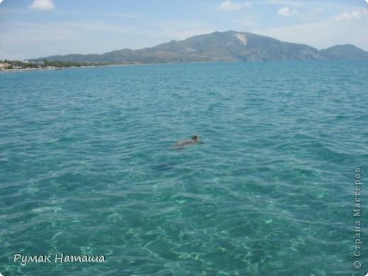 о-ров ЗАКИНТОС....Среди изумрудных вод Ионического моря расположился настоящий райский уголок — древний остров Закинф (Zakynthos), воспетый поэтами и своей историей уходящий в далекое прошлое. Остров называли «Цветком средиземного востока» — и действительно, красота Закинфа достойна кисти художника — золотые песчаные дюны, окаймленные пышной зеленью и вековыми соснами, живописные бухты, окруженные причудливыми скалами, оливковые и апельсиновые рощи, ухоженные виноградники и уютные деревушки с узкими улочками и старинными монастырями. Остров известен с доисторических времен и считается первым местом обитания Закинфа — сына царя Фригии Дардано. Жители острова сражались на стороне Одиссея в Троянской войне и позднее установили демократическое правление. Еще в далеком прошлом, благодаря своему географическому положению и большому запасу смолы, остров познал свой политический и торговый расцвет. Он занял нейтральную позицию в войне с персами, а в Пелопоннесской войне сражался на стороне афинян. Закинф был покорен воинами Александра Македонского и позже — римлянами, которые предоставили ему частичную автономию. Христианство, согласно древним преданиям, было распространено на острове с появлением там Марии Магдалины в 34 году н. э. На всем протяжении Византийской эпохи остров подвергался нападениям морских пиратов и вандалов, позже — крестоносцев. Закинф имел всегда и сохраняет по сей день высокий уровень культуры.  фото 7