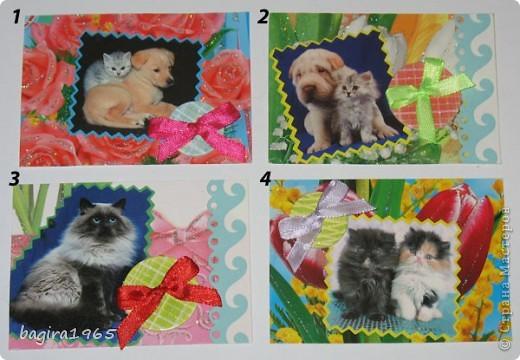 Было такое настроение: что-нибудь повырезать - взяла и изрезала все старые поздравительные открытки... Потом обнаружила старый календарь с котятами, тоже изрезала... Ну, и в итоге, вот что получилось... Цветочно-котёнковое настроение...  № 1 - Поллианна № 2 - werunka № 3 - Катя За № 4 - olhga фото 1