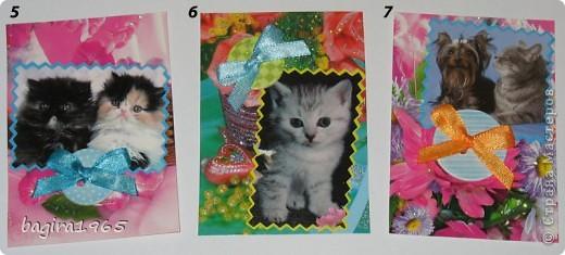 Было такое настроение: что-нибудь повырезать - взяла и изрезала все старые поздравительные открытки... Потом обнаружила старый календарь с котятами, тоже изрезала... Ну, и в итоге, вот что получилось... Цветочно-котёнковое настроение...  № 1 - Поллианна № 2 - werunka № 3 - Катя За № 4 - olhga фото 2