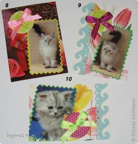 Было такое настроение: что-нибудь повырезать - взяла и изрезала все старые поздравительные открытки... Потом обнаружила старый календарь с котятами, тоже изрезала... Ну, и в итоге, вот что получилось... Цветочно-котёнковое настроение...  № 1 - Поллианна № 2 - werunka № 3 - Катя За № 4 - olhga фото 3