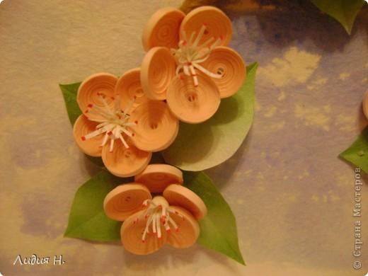 Видела много работ с цветущими яблонями, вишнями, захотелось тоже сделать что-нибудь подобное.  фото 2