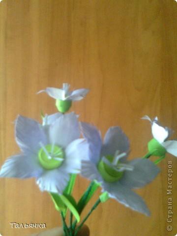 """Эти цветы - часть моей будущей композиции, скоро выложу, а пока... Оцените, пожалуйста. Дорогие мастерицы, может кто-то знает название этих цветов (а может непохоже?), делала, так сказать, с """"натуры"""". фото 7"""
