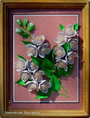 Здравствуйте, уважаемые Мастерицы!!! Сегодня у меня жасмин. Очень люблю это растение - очаровательные цветочки и изумительный запах!!! Куст жасмина растет у меня в палисаднике. фото 1